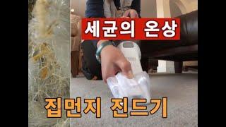 세균의 온상 집먼지진드기를 박멸하자!!(필수영상) 아토…