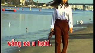 Niem Dau Chon Dau Karaoke