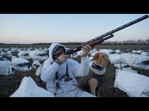 Insane 20 Gauge 10 Shot Goose Hunt! (Fred's Best Hunt!?)