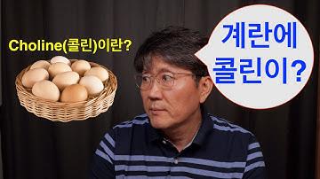 콜린(Choline)영양소에 대해서~~~! 계란에 함유되어 있다? 치매, 치매예방(기능의학,영양의학)