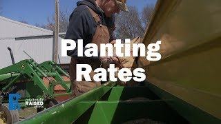 Small Grains Planting Rates