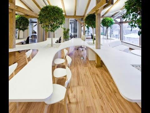 OFFICE GREENHOUSE interior design in Riga, Latvia