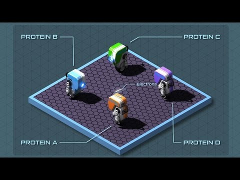 Video image: The operating system of life - George Zaidan and Charles Morton