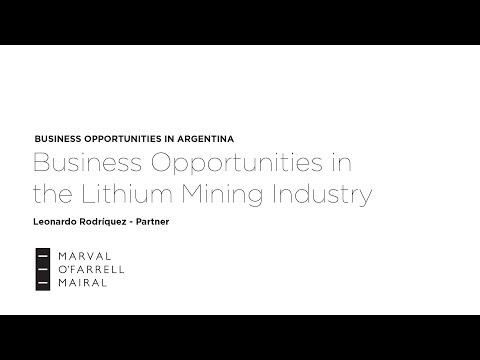 Business Opportunities in the Lithium Mining Industry in Argentina