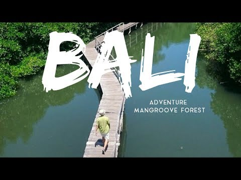 BALI ADVENTURE AT MANGROVE FOREST DESTINATION TIPS & ADVICE TRAVELING ON A BUDGET