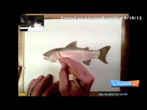 Watercolor Painting of a Trout from Live Lesson