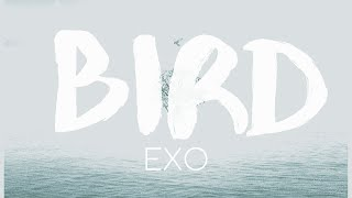 Gambar cover EXO - BIRD Lyrics | 歌詞 (Japanese / Romaji & English)