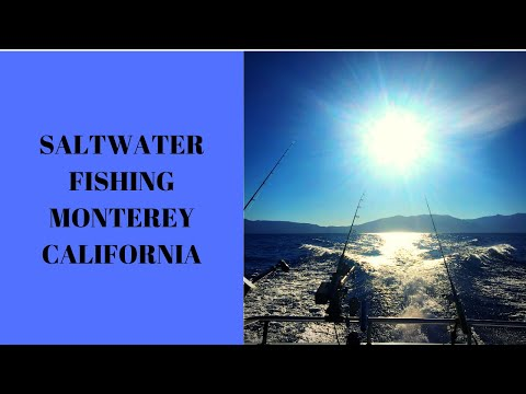 SALMON FISHING MONTEREY BAY!!!