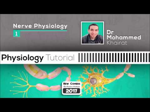 Physiology of nerve (4)| Action potential & Ionic basis of it