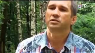 видео БЕРЕЗОВЫЙ СОК: КАК ПРАВИЛЬНО СОБИРАТЬ И ЧЕМ ОН ПОЛЕЗЕН