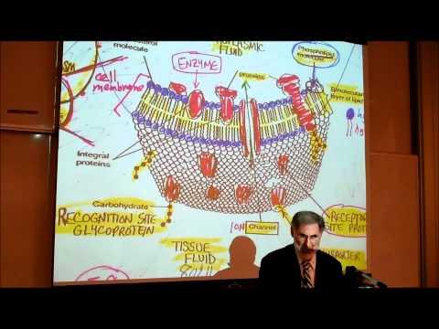 BIOLOGY; CYTOLOGY; PART 1 by Professor Fink