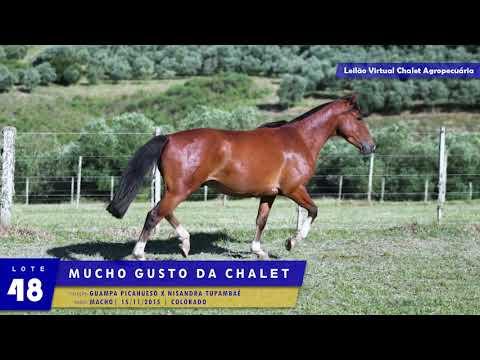LOTE 48 - Mucho Gusto da Chalet