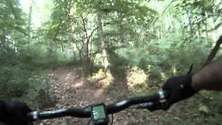 Fair Hill MTB Trail lower section 06/2015