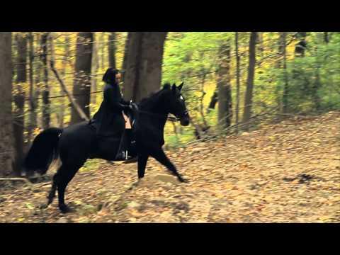 Austra - Spellwork (Official Video)