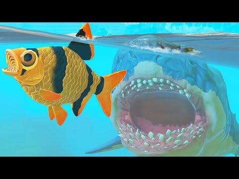 НОВАЯ СЕКРЕТНАЯ ТИГРОВАЯ РЫБА, ОБНОВЛЕНИЕ! | Feed And Grow Fish