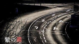 10分ほど走った頃だろうか。 道路に霧がかかってきて… 【BGM】 ソース: ...