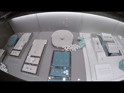 2018 Tiffany and Co. Jewelry Store tour aboard the Disney Fantasy