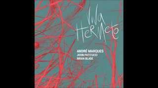 11.  Chorinho pra ele | Viva Hermeto - André Marques, John Patitucci e Brian Blade