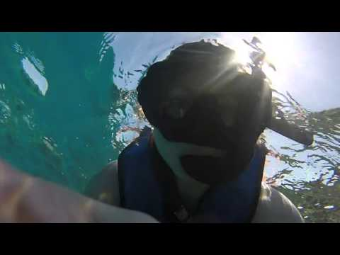 Snorkeling in the Dominican Republic #1 - 29Mar2016