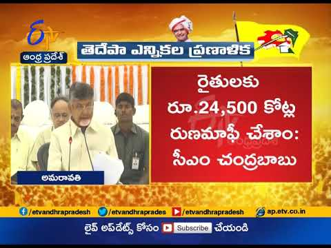 TDP 2019 Elections Manifesto | Released by Chandrababu | Live