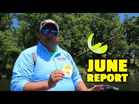 Western MN and Dakotas Fishing Report - Cody Roswick