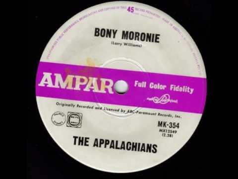 The Appalachians - Bony Moronie
