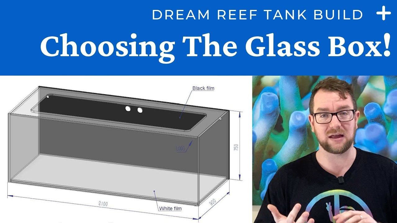 My Dream Reef Tank Build - Choosing The Glass Box!