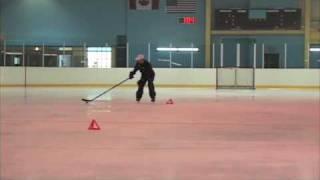 iTrain Hockey Puck Protection