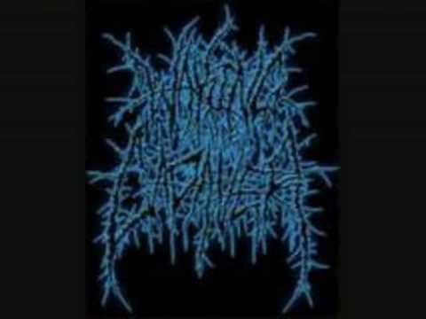 Waking The Cadaver - blood splattered satisfaction (audio)