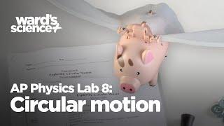 8 AP Fizik Laboratuarı: Dairesel Hareket