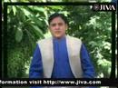 Jiva Ayurveda and Weight Loss OR Obesity TV Shows