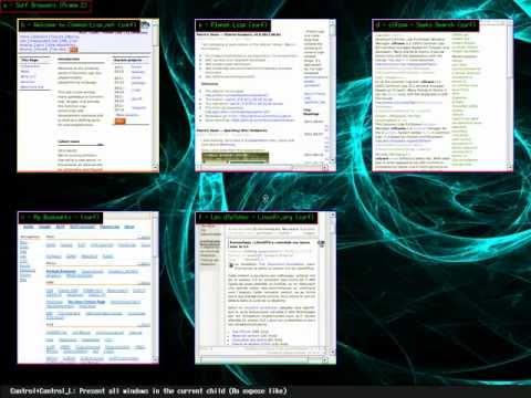 A Common Lisp FullScreen Window Manager (CLFSWM) presentation
