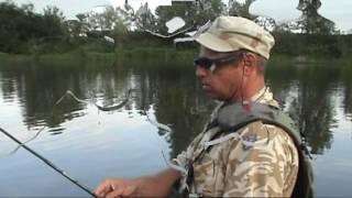 Ловля хищника на поверхностные приманки (поппер, волкер). Архивное видео.