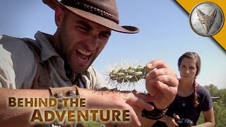 Gila Monster - Behind the Adventure