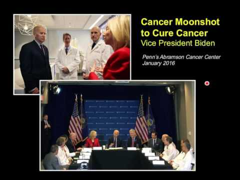 Immunotherapy for Pancreatic Cancer