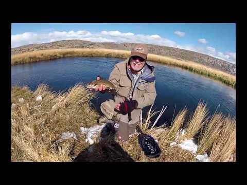 Hot Creek Ranch Fly Fishing