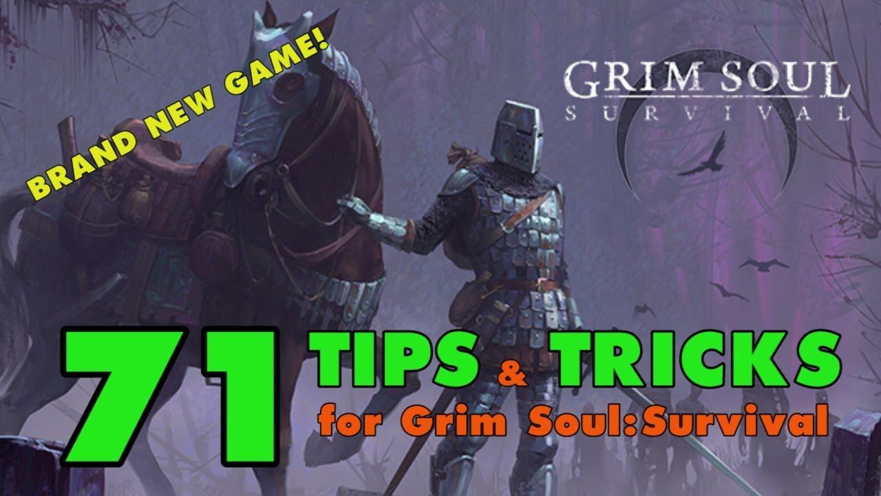 Grim Soul Survival: 71 Tips and Tricks for Grim Soul Dark Fantasy Survival
