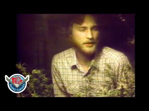 Alaska's Semi-legal Pot Problem/solution, 1980