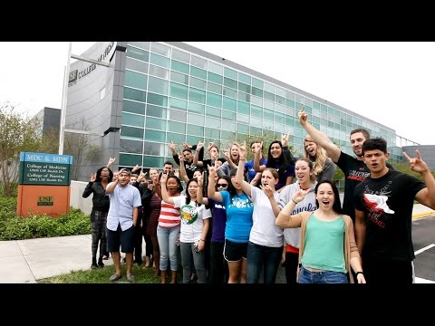 a-day-in-the-world-of-usf-nursing-students-march-2015