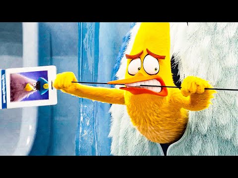 Chuck steals the Keycard Scene - THE ANGRY BIRDS MOVIE 2 (2019) Movie Clip