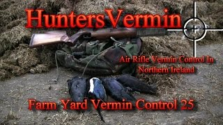 Air Rifle Hunting, Farm Yard Vermin Control 25