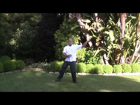 Primordial Qigong with Marty Wuttke, Executive Director, NeuroTherapy Centers International