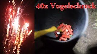 40x Vogelschreck + 4