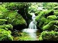Video Per Smettere Di Pensare E Calmare La Mente. Musica Rilassante