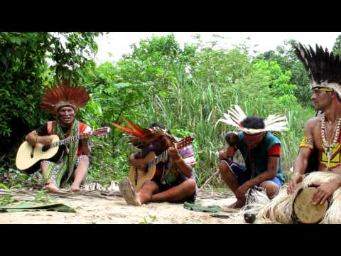 Shaman Songs of the Amazon Rainforest: Pasha Dume