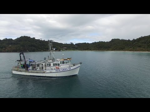 Marine Geology & Geophysics at the University of Otago