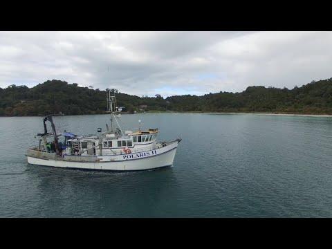 Marine Geology & Geophysics at the University of Otago