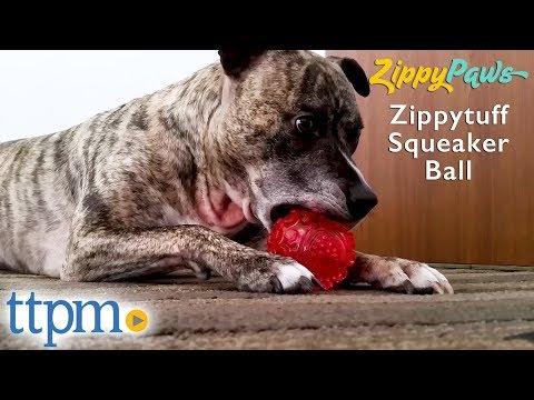 zippytuff-squeaker-ball-from-zippypaws