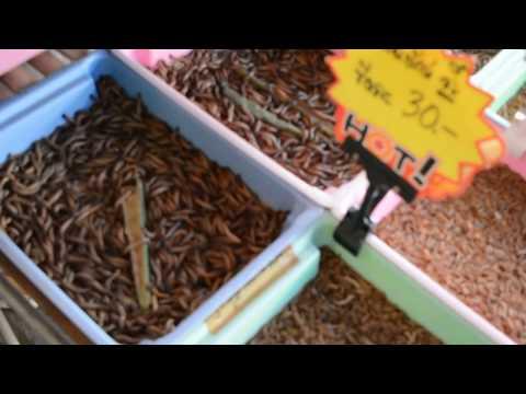 Чатучак!Бангкок!Тайланд!Bangkok chatuchak market!птичий рынок!аквариумистика!часть1!