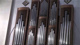 Concierto de música sacra en la Concatedral de Santa María. Órgano:...